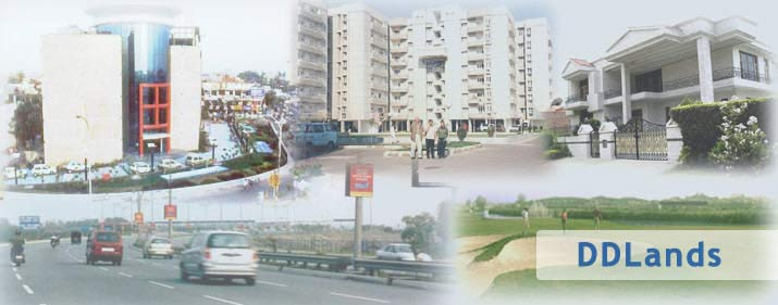 Real Estate Noida